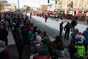 Dog teams line up for their turn to leave the start line on 4th avenue as spectators watch from the sidewalk during the ceremonial start of the 2019 Iditarod on Saturday March 2..Photo by Jeff Schultz/  (C) 2019  ALL RIGHTS RESERVED