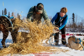 Michael Baker makes a bed of straw for his dogs as volunteer veterinarian Lori Baldwin examines them at the Galena checkpoint during the 2017 Iditarod on Friday afternoon March 10, 2017.Photo by Jeff Schultz/SchultzPhoto.com  (C) 2017  ALL RIGHTS RESERVED