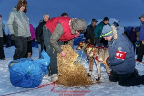 Veterinarian Greg Closter talks over the health of a dog with Nicolas Petit at the Kaltag village checkpoint on Saturday evening, March 10th during the 2018 Iditarod Sled Dog Race -- AlaskaPhoto by Jeff Schultz/SchultzPhoto.com  (C) 2018  ALL RIGHTS RESERVED