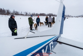 Dropped dogs wait for loading into Jerry Wortley's plane at the ghost-town checkpoint of Iditarod on Saturday, March 10th during the 2018 Iditarod Sled Dog Race -- AlaskaPhoto by Jeff Schultz/SchultzPhoto.com  (C) 2018  ALL RIGHTS RESERVED