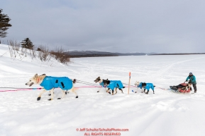 Anna Berington runs up the bank of the Yukon River and into the Kaltag village checkpoint on Sunday afternoon March 11th during the 2018 Iditarod Sled Dog Race -- AlaskaPhoto by Jeff Schultz/SchultzPhoto.com  (C) 2018  ALL RIGHTS RESERVED