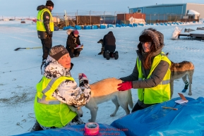 Dropped dog handlers care for a few dropped dogs at Unalakleet on Sunday evening March 11th during the 2018 Iditarod Sled Dog Race -- AlaskaPhoto by Jeff Schultz/SchultzPhoto.com  (C) 2018  ALL RIGHTS RESERVED