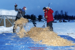 Volunteers Amy Graham and Bob Lawson rake used straw at the Kaltag village checkpoint on Sunday morning March 11th during the 2018 Iditarod Sled Dog Race -- AlaskaPhoto by Jeff Schultz/SchultzPhoto.com  (C) 2018  ALL RIGHTS RESERVED