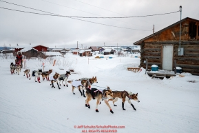 Aliy Zirkle runs through town as she leaves the Kaltag checkpoint during the 2017 Iditarod on Sunday morning March 12, 2017.Photo by Jeff Schultz/SchultzPhoto.com  (C) 2017  ALL RIGHTS RESERVED