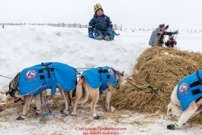 A young boy watches Katherine Keiths dogs from a snowberm at the Unalakleet checkpoint on Monday  afternoon March 12th during the 2018 Iditarod Sled Dog Race -- AlaskaPhoto by Jeff Schultz/SchultzPhoto.com  (C) 2018  ALL RIGHTS RESERVED