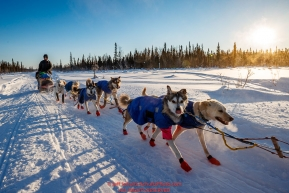 Seth Barnes runs on the trail after leaving the Kaltag checkpoint during the 2017 Iditarod on Monday morning March 12, 2017.Photo by Jeff Schultz/SchultzPhoto.com  (C) 2017  ALL RIGHTS RESERVED