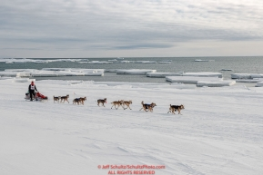 Aliy Zirkle runs on the Bering Sea ice near Nome with open water and icebergs in the background on her way to a 4th place finish of the 2019 Iditarod on Wednesday March 13Photo by Jeff Schultz/  (C) 2019  ALL RIGHTS RESERVED