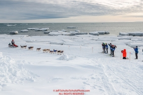 Aliy Zirkle runs off of the Bering Sea ice near Nome with open water and icebergs in the background with a crowd of spectators cheering her on as she heads to a 4th place finish of the 2019 Iditarod on Wednesday March 13Photo by Jeff Schultz/  (C) 2019  ALL RIGHTS RESERVED