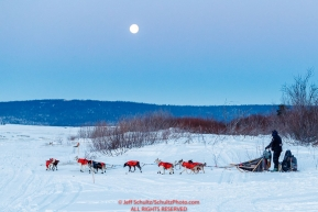 Ken Anderson runs down the bank and onto the sea ice of Norton Sound with a full moon as he leaves the Koyuk checkpoint during the 2017 Iditarod on Tuesday morning March 12, 2017.Photo by Jeff Schultz/SchultzPhoto.com  (C) 2017  ALL RIGHTS RESERVED