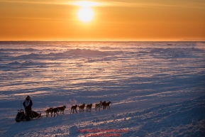 Ketil Reitan runs on the Bering Sea at sunset on the trail heading toward the finish at Nome on Wednesday March 14th during the 2018 Iditarod Sled Dog Race.  Photo by Jeff Schultz/SchultzPhoto.com  (C) 2018  ALL RIGHTS RESERVED