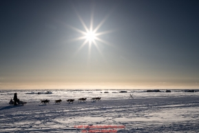 Aaron Burmeister runs past fish camps on the outskirts of the city as he heads toward the finish at Nome on Wednesday March 14th during the 2018 Iditarod Sled Dog Race.  Photo by Jeff Schultz/SchultzPhoto.com  (C) 2018  ALL RIGHTS RESERVED