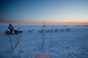 Aliy Zirkle runs on the trail past fish camps and tripod trail markers at sunset heading toward the finish at Nome on Wednesday March 14th during the 2018 Iditarod Sled Dog Race.  Photo by Jeff Schultz/SchultzPhoto.com  (C) 2018  ALL RIGHTS RESERVED