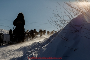 Paige Drobny and team run up the hill from the Yukon River at the Kaltag checkpoint in a 20 mph wind on the afternoon of Sunday  March 15, 2015 during Iditarod 2015.  (C) Jeff Schultz/SchultzPhoto.com - ALL RIGHTS RESERVED DUPLICATION  PROHIBITED  WITHOUT  PERMISSION