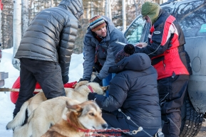 Volunteer Veterinarians examine the dogs of Justin Stielstra at the pre-race vet-check for dogs running this year's 2017 Iditarod at Iditarod Headquarters in Wasilla, Alaska.  Wednesday March 1, 2017Photo by Jeff Schultz/SchultzPhoto.com  (C) 2017  ALL RIGHTS RESVERVED