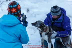 Teachers from the Iditarod Education Conference take photos and look at the dogs and mushers at the pre-race vet-check for dogs running this year's 2017 Iditarod at Iditarod Headquarters in Wasilla, Alaska.  Wednesday March 1, 2017Photo by Jeff Schultz/SchultzPhoto.com  (C) 2017  ALL RIGHTS RESVERVED