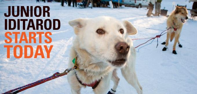 Jr Iditarod