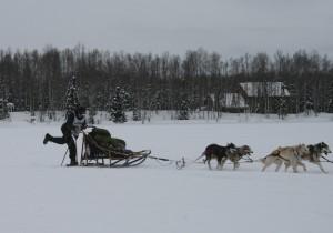 Noah Pereira crossing Willow Lake at the 2013 Jr. Iditarod.