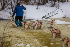 looks like jim lanier negotiating overflow ten miles short of iditarod.  this great photo taken by Hideo Sato, a japaneese photographer traveling with super-cub pilot exrordinaire jay claus