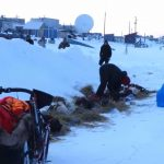 Unalakleet, Iditarod 2018