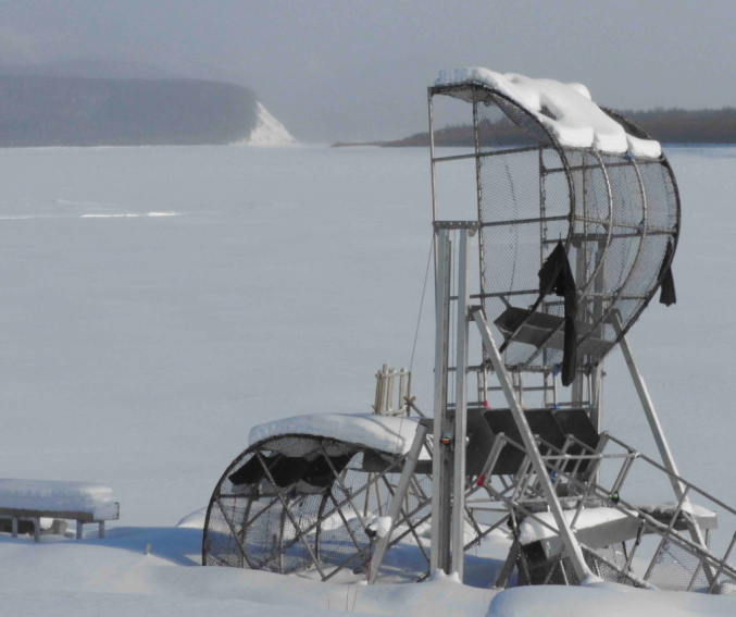 Fish wheel, Kaltag, Yukon River, Iditarod 2018